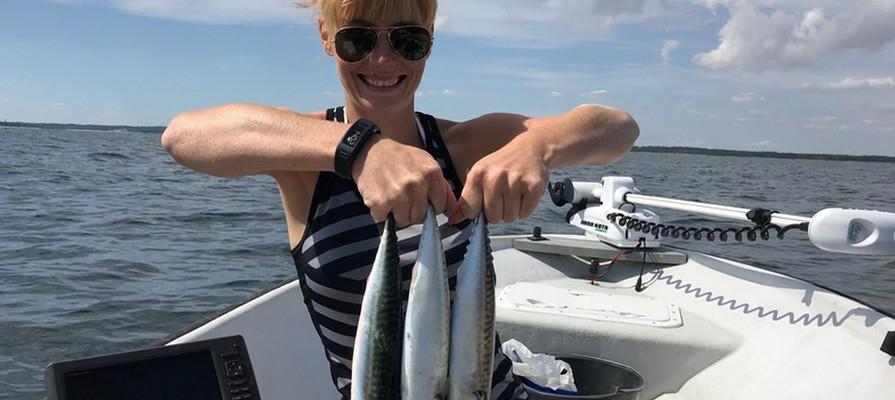Fang en makrel